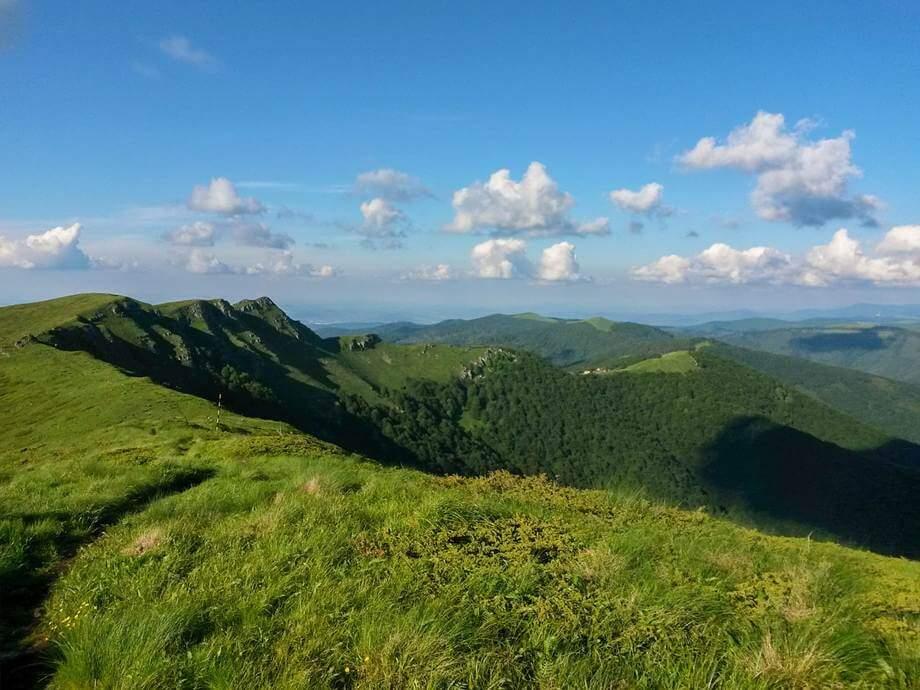 priroda stare planine