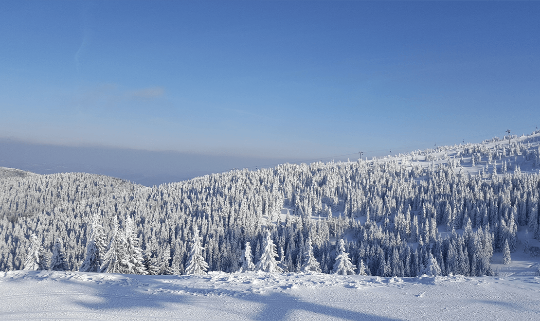 Priroda na Staroj planini