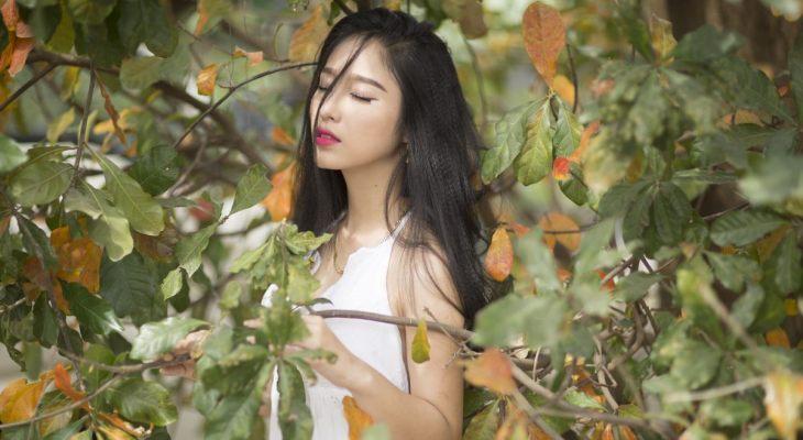 Korejka među granama drveta