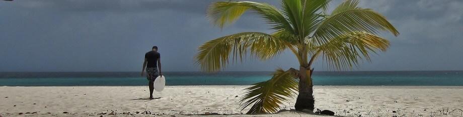 Čovek na peščanoj plaži i palma
