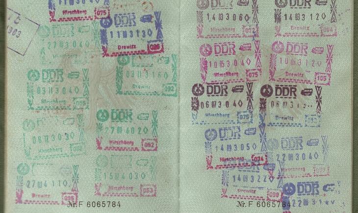 vize u pasošu