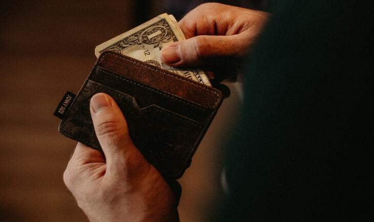 kožni novranik i novac u njemu